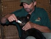 Benny-cub,-July-16-2014,web,DSC_0072
