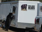 bear-inspection,b,web,May-6-2014,D804494