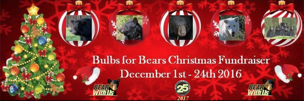 FR banner,bulbs for bears,Screen Shot