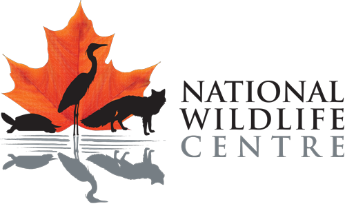 National Wildlife Center